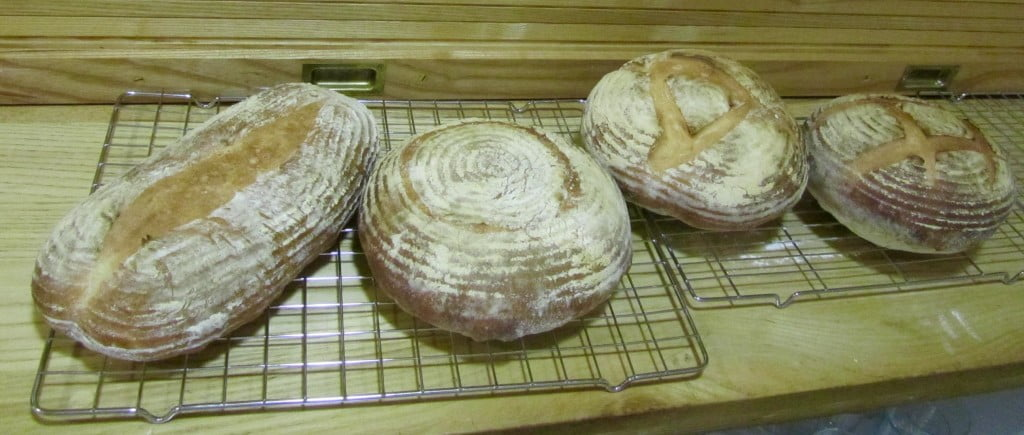 White loaves made on the night